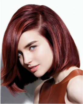 haircut and color deals hair color amp highlights daily deals hit the deals of 5496